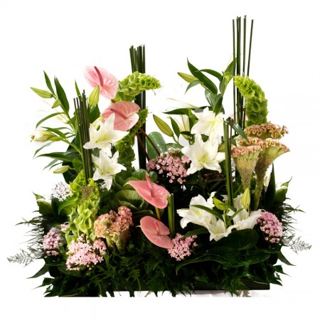 Symphonie Florale